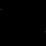 Neaera_logo.png